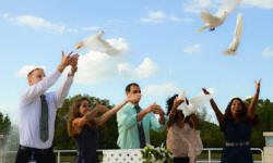 medical students dove release